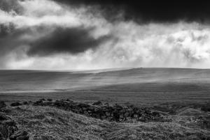 Fox Tor & the Mire