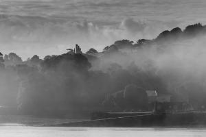 Mist the Ferry